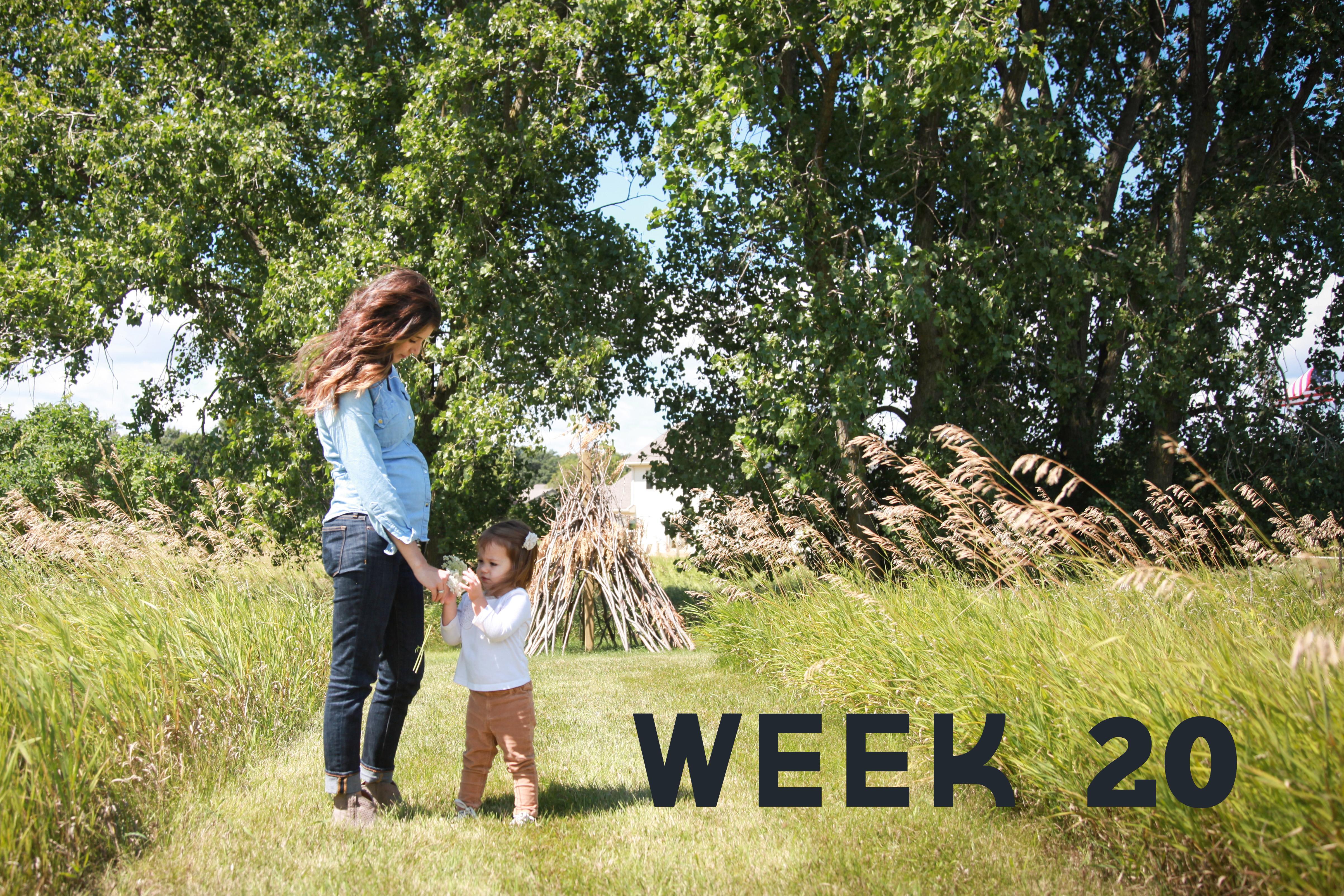 Week 20_blogfinal