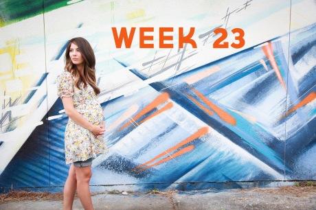 Week 23-8 final