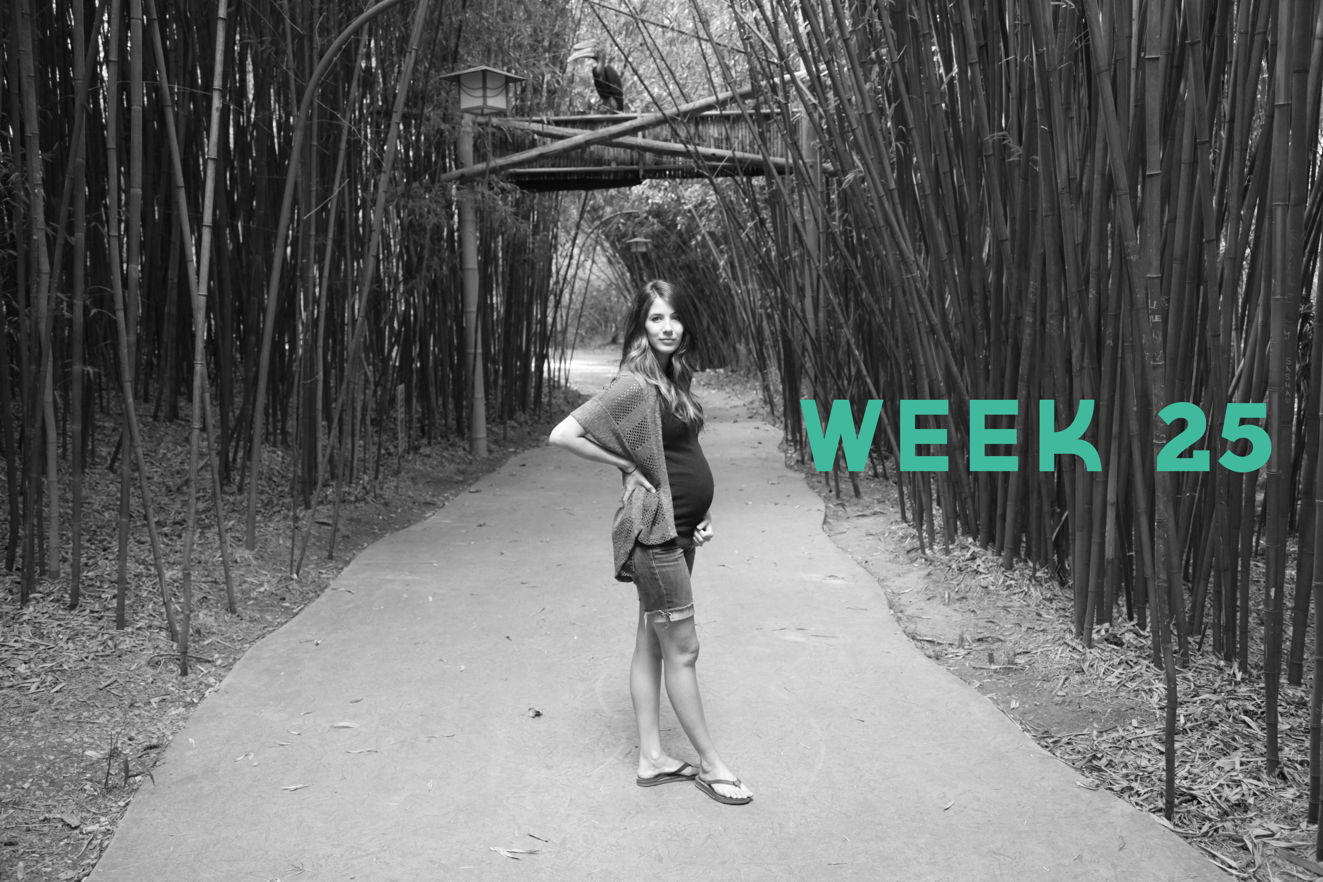 Week 25-2 final