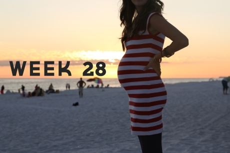 Week-28-web-blog